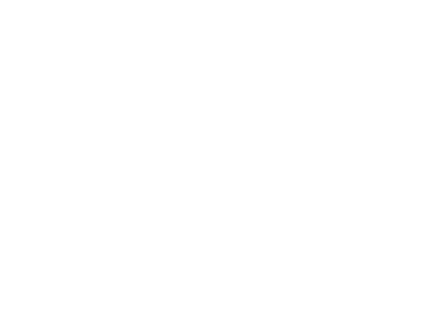 Logo Qwanty Consulting Blanc
